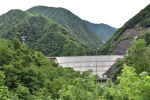 ダム湖と自然